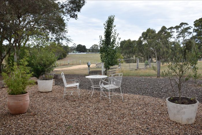 Cygnet Park Country Retreat - Tourism Caloundra