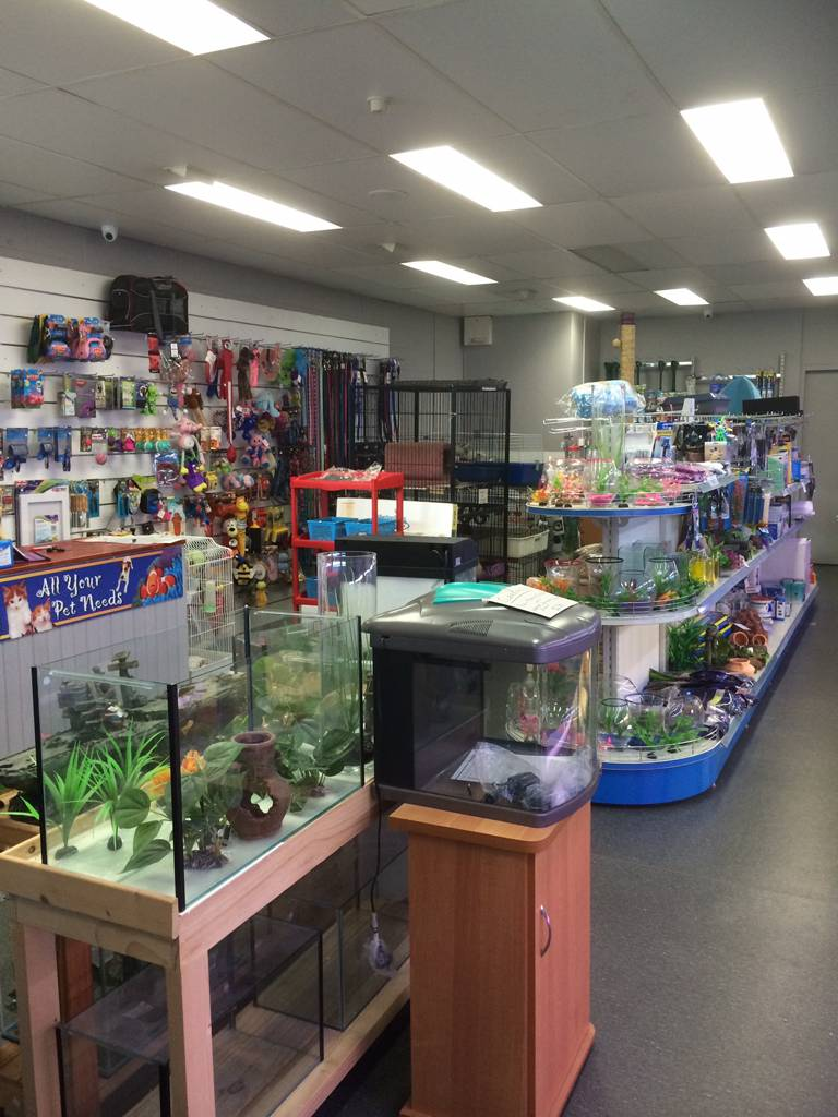 Nambour Pet Shop - Tourism Caloundra