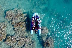 Glass-bottom boat tour with Whitehaven Beach - Tourism Caloundra