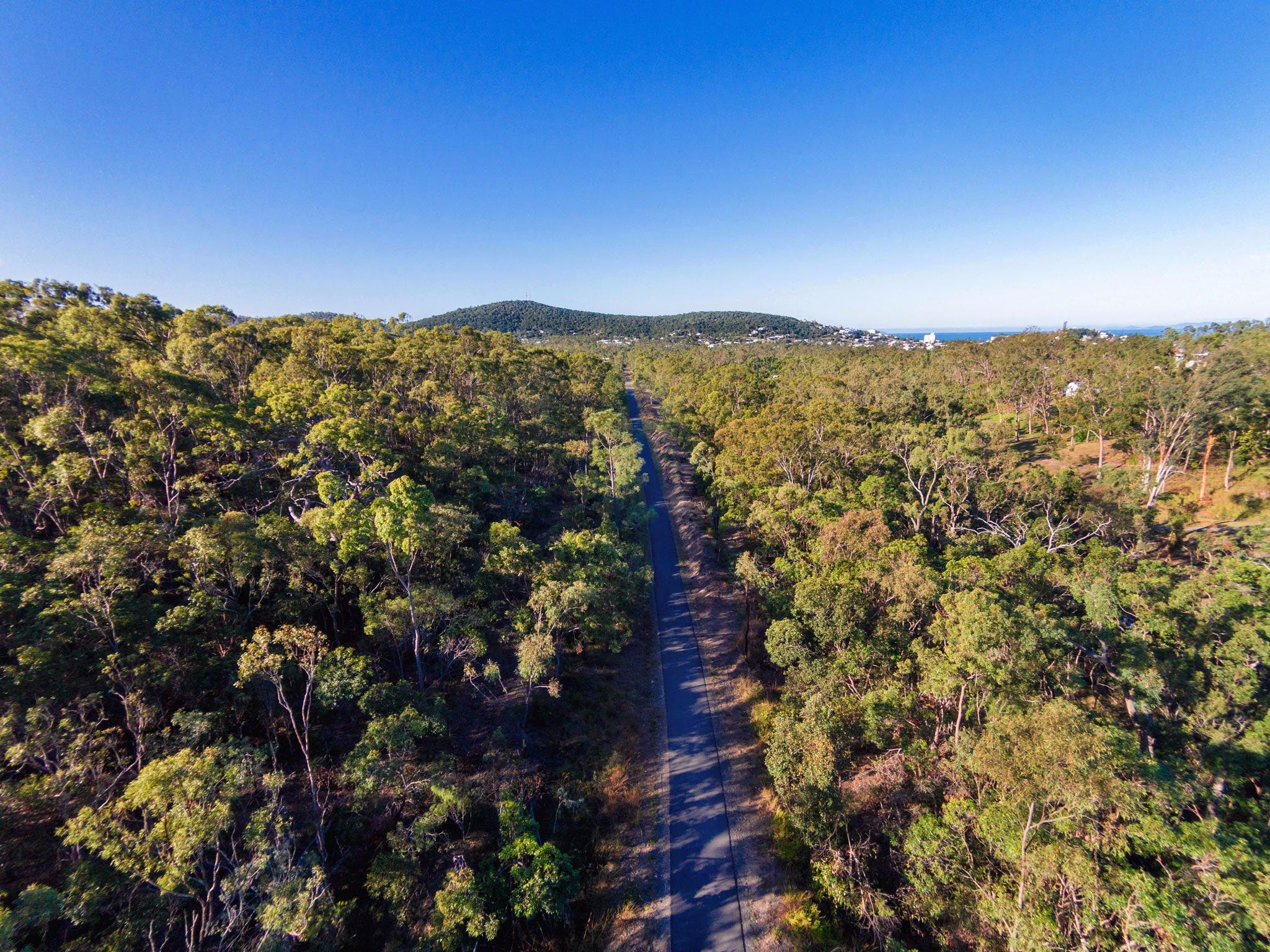 Capricorn Coast Pineapple Rail Trail - Tourism Caloundra