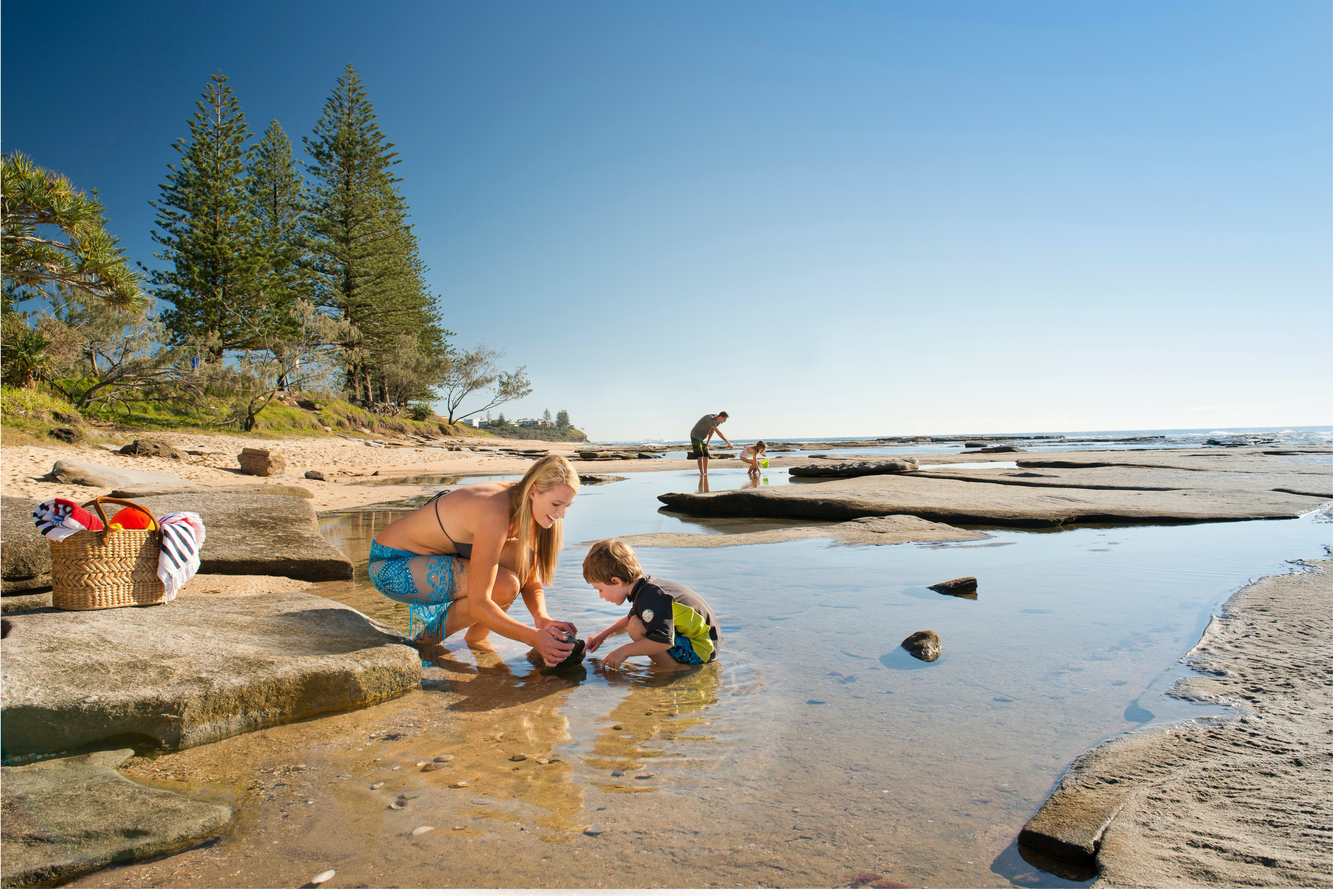 Shelly Beach - Tourism Caloundra