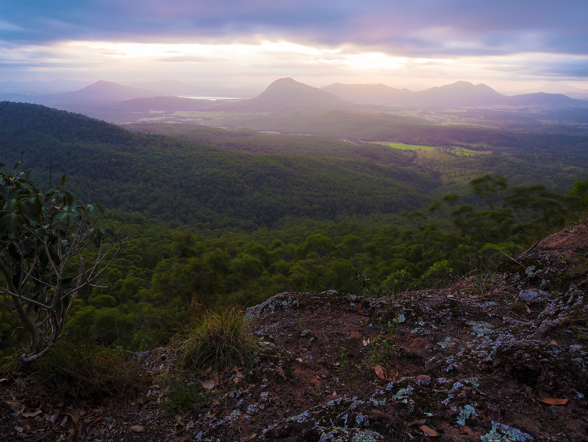 Cunninghams Gap and Spicers Gap Main Range National Park - Tourism Caloundra