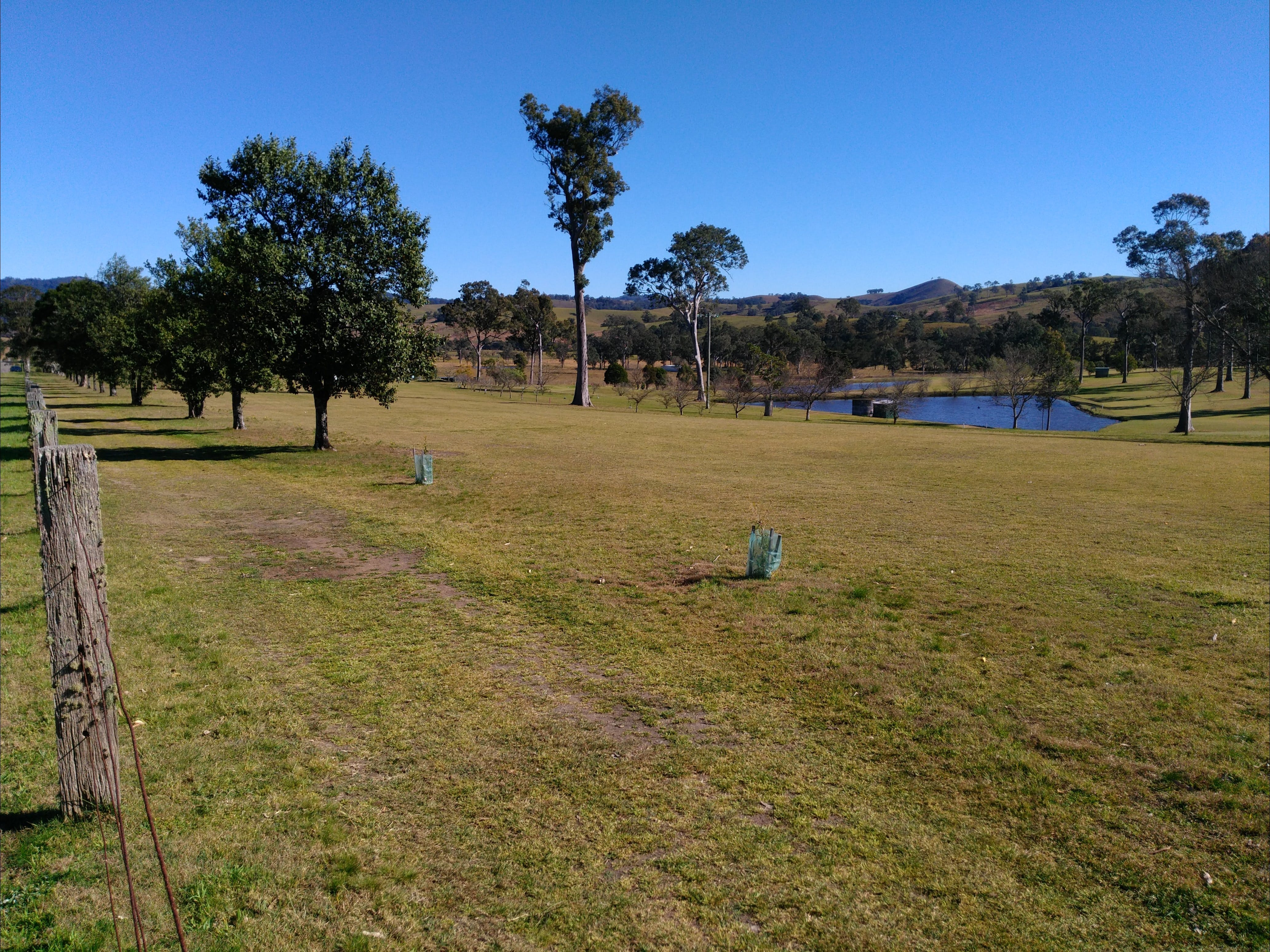 Dungog and District Golf Club - Tourism Caloundra