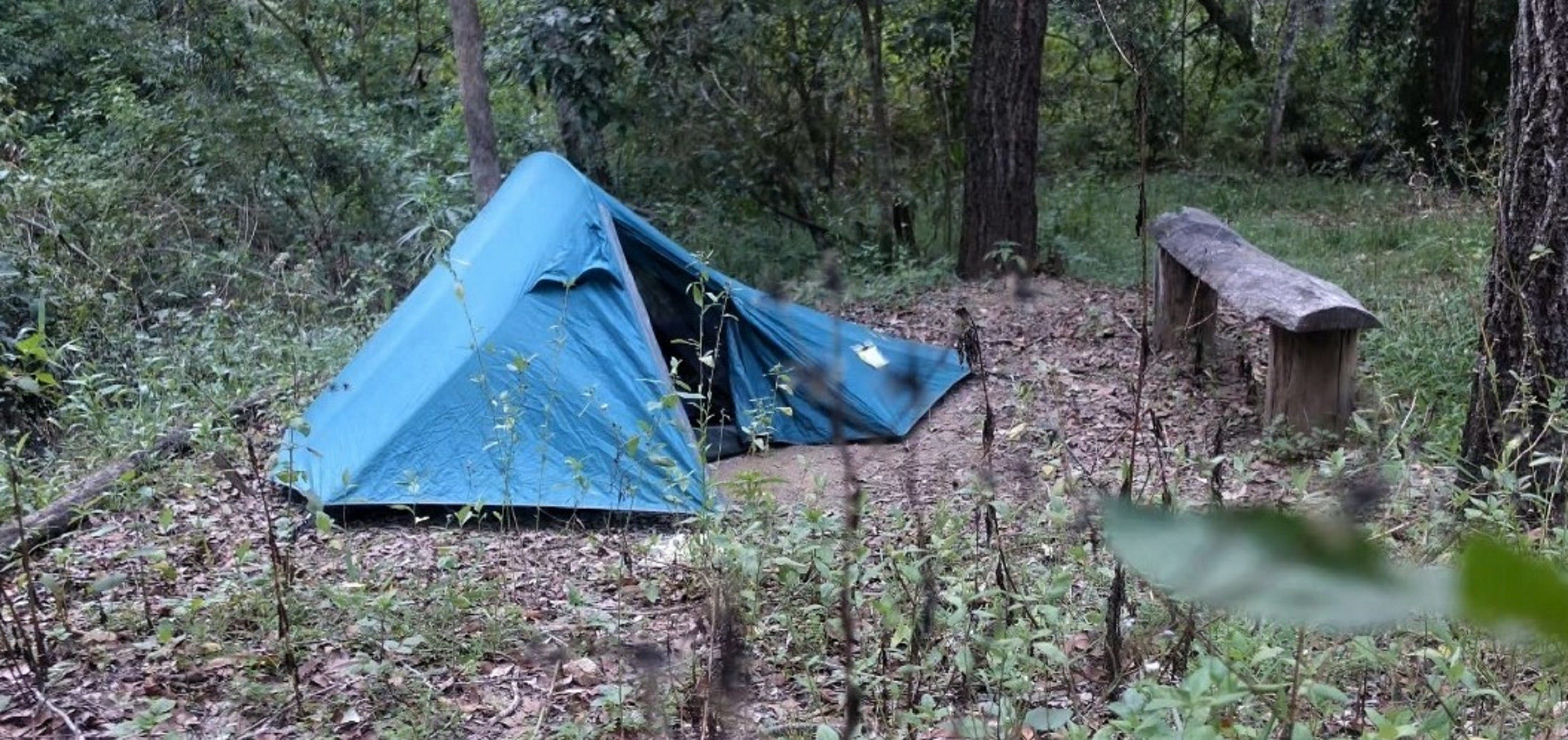 England Creek Bush Camp - Tourism Caloundra