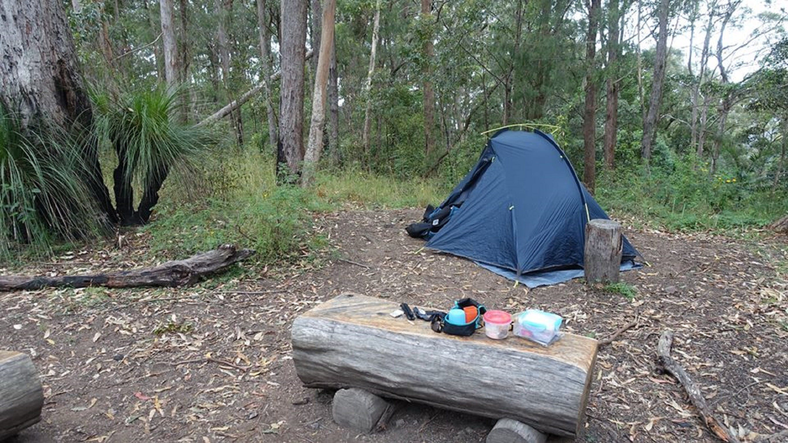 Northbrook Mountain Bush Camp - Tourism Caloundra