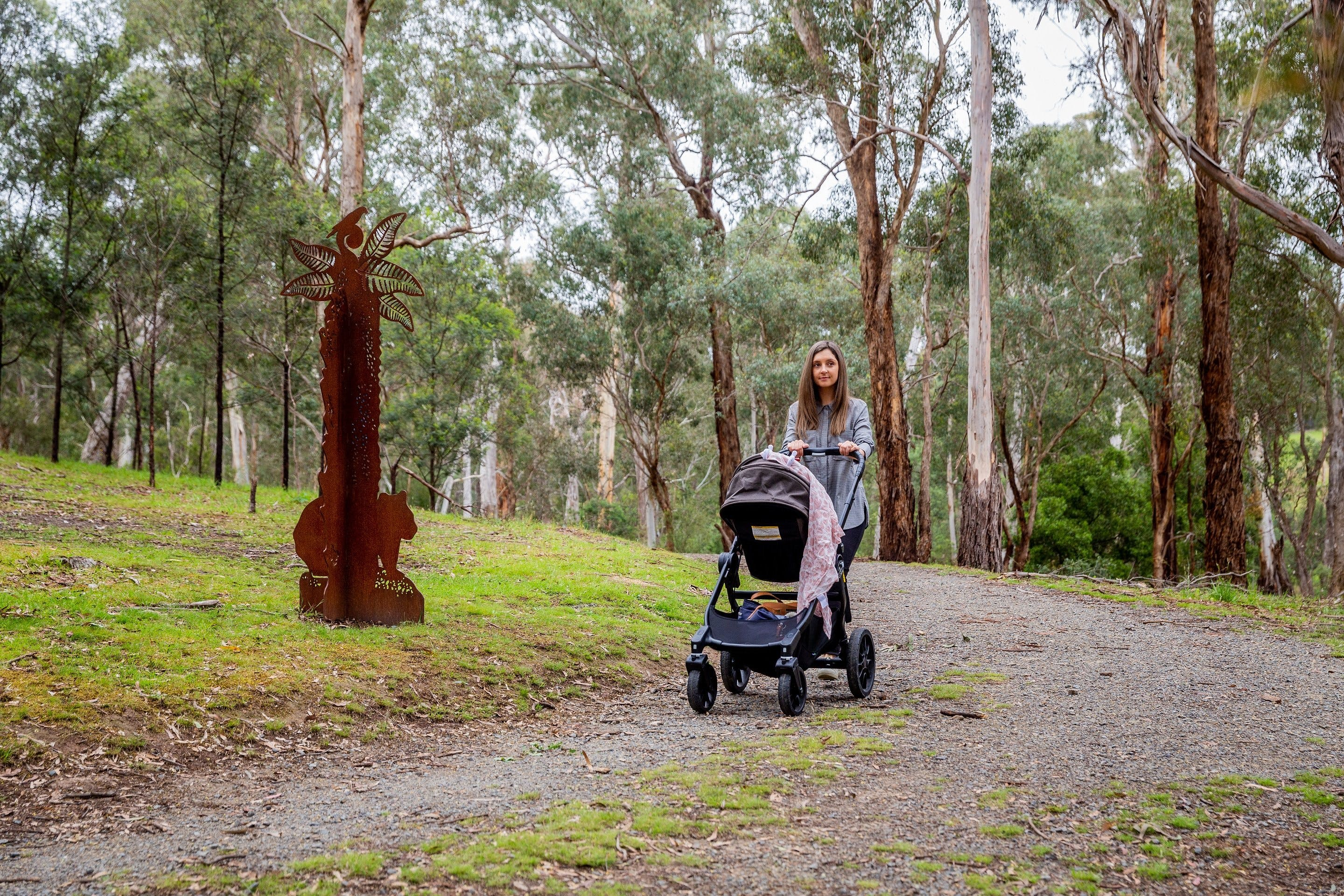 Currawong Bush Park - Tourism Caloundra