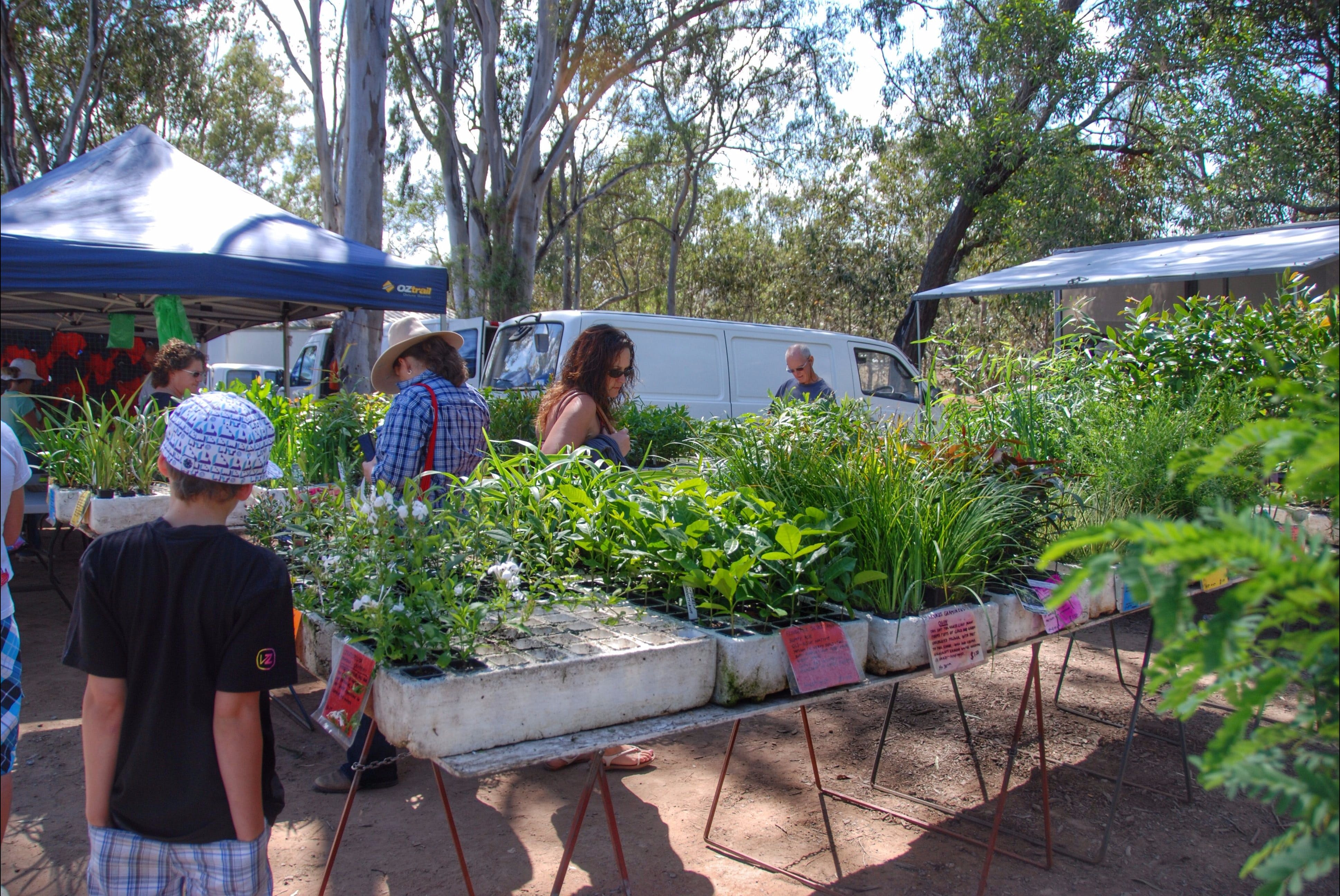Fernvale Country Markets - Tourism Caloundra