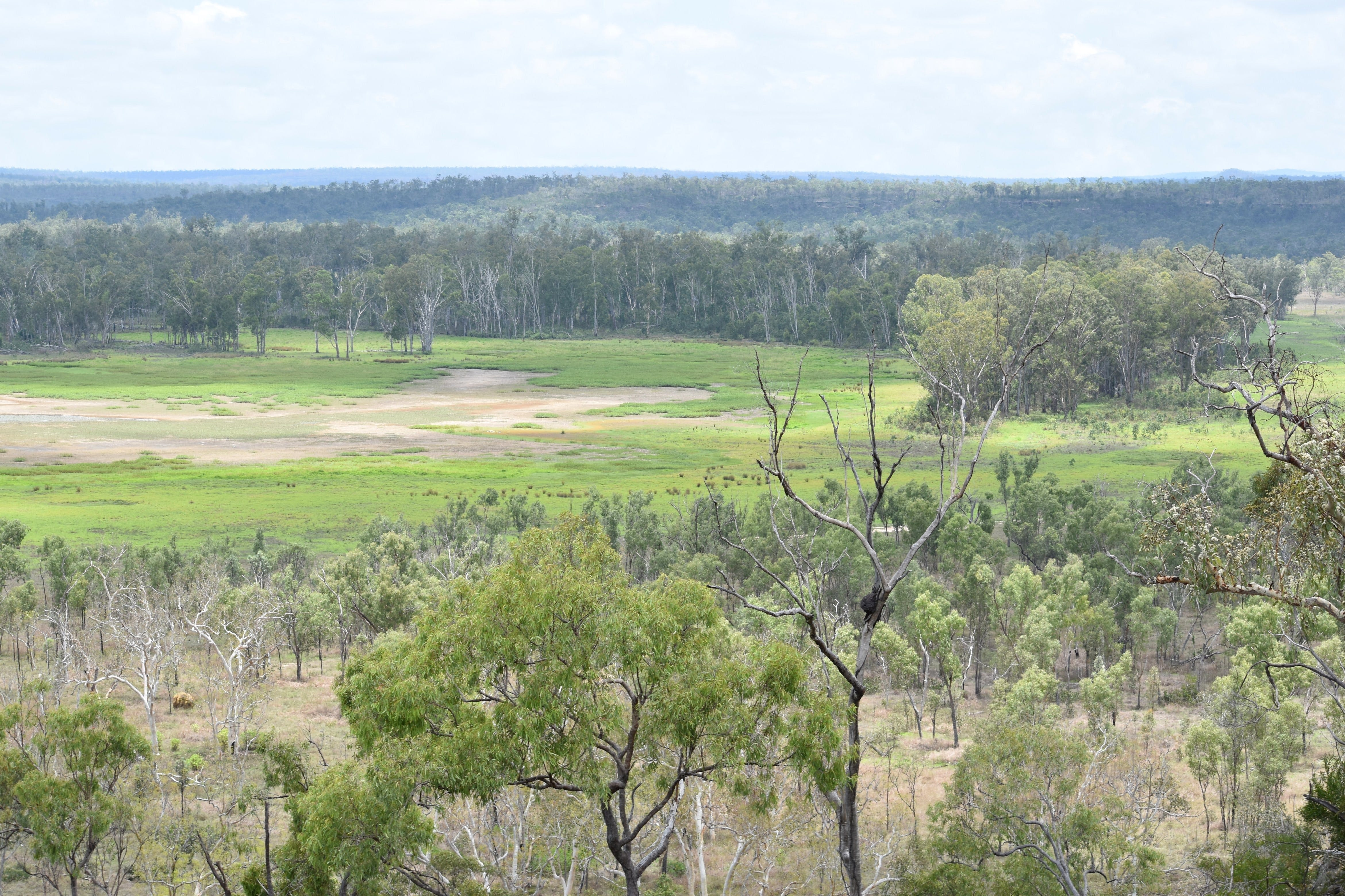 Princess Hills Girringun National Park - Tourism Caloundra