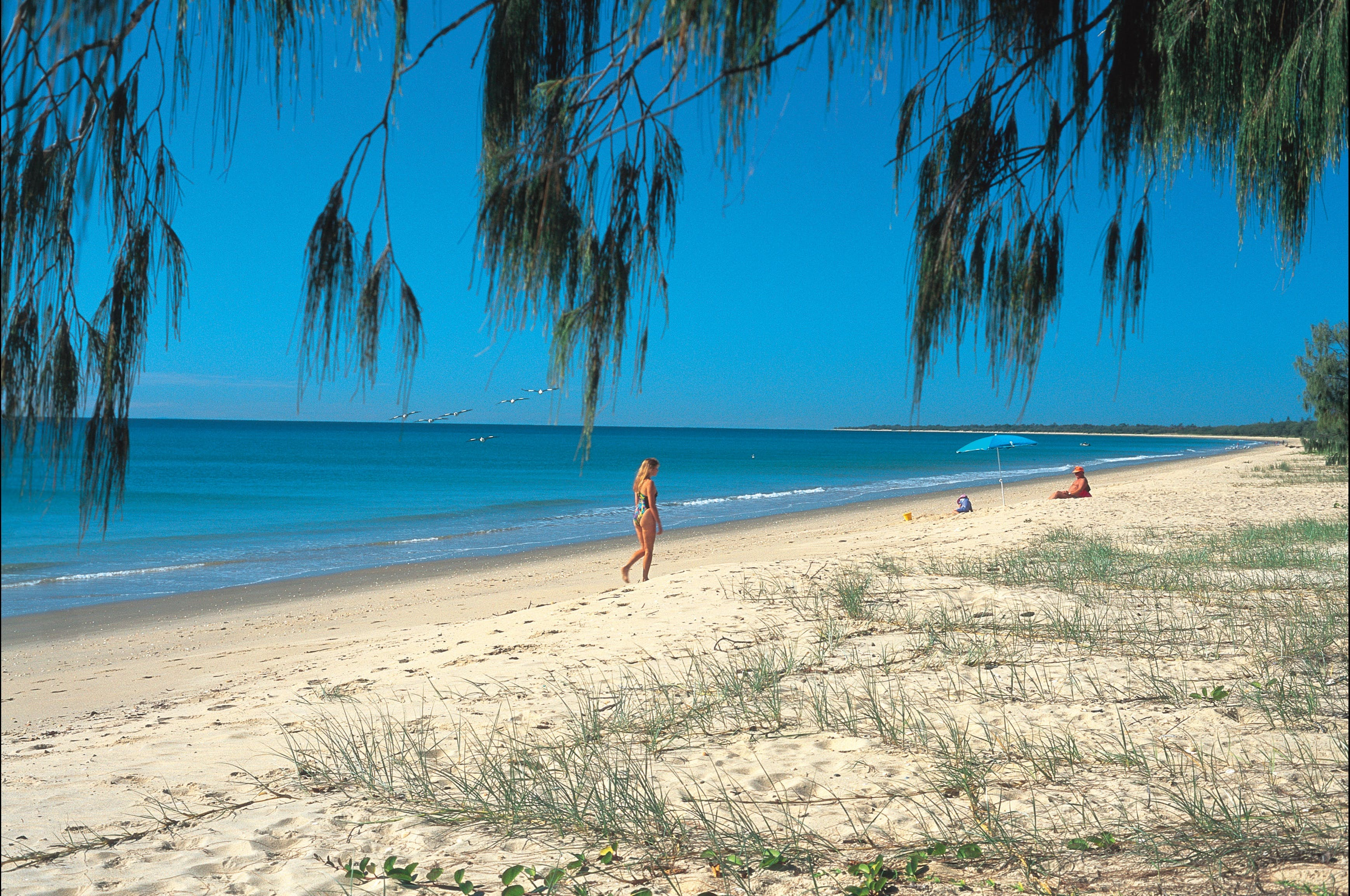Woodgate Beach Park and Playground - Tourism Caloundra