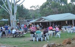 Bush Shack Brewery - Tourism Caloundra