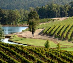 Brookhampton Estate Vineyard - Tourism Caloundra