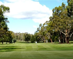 Cooma Golf Club - Tourism Caloundra