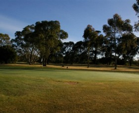 Winchelsea Golf Club - Tourism Caloundra