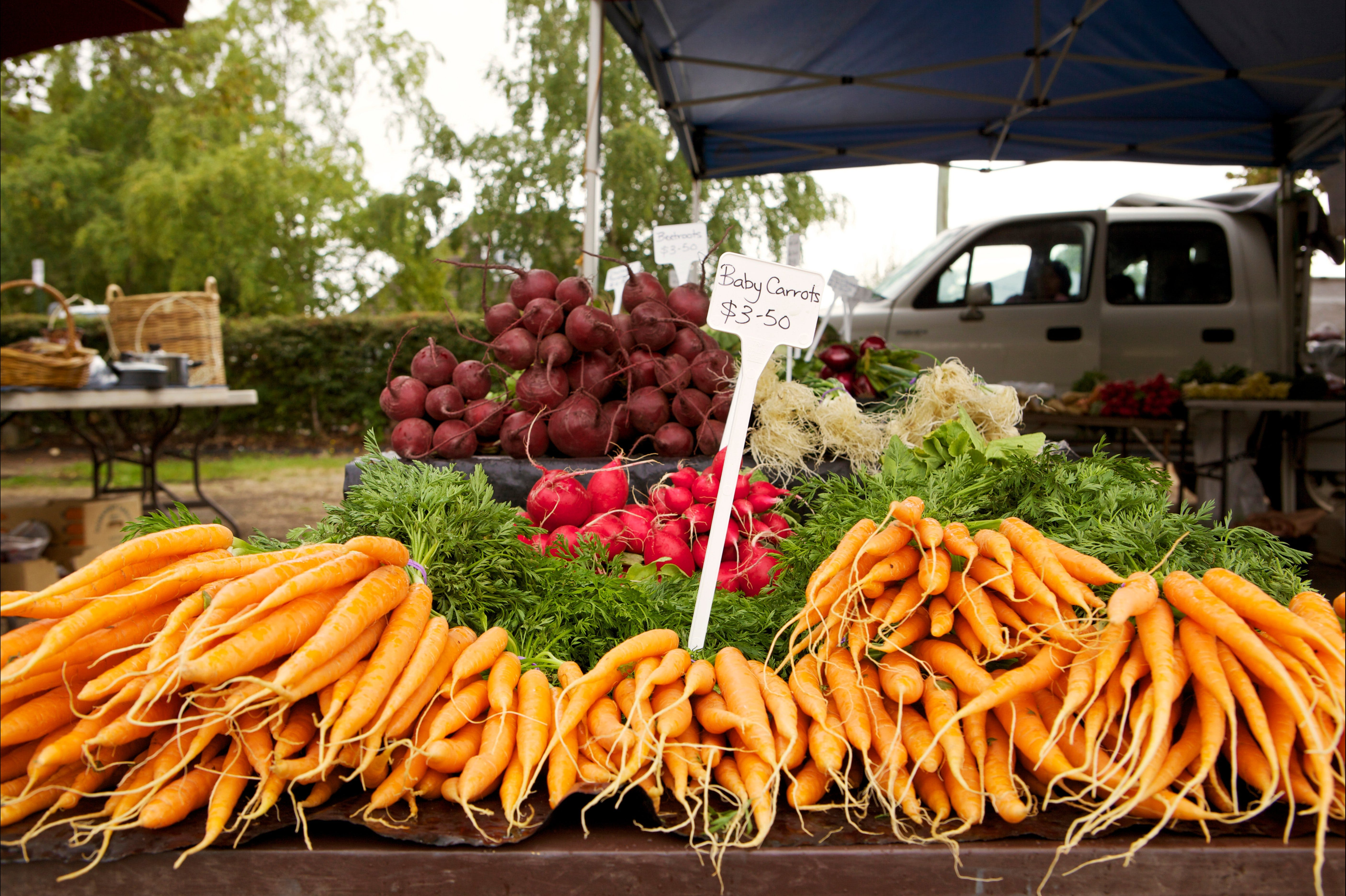 Evandale Market - Weekly - Tourism Caloundra
