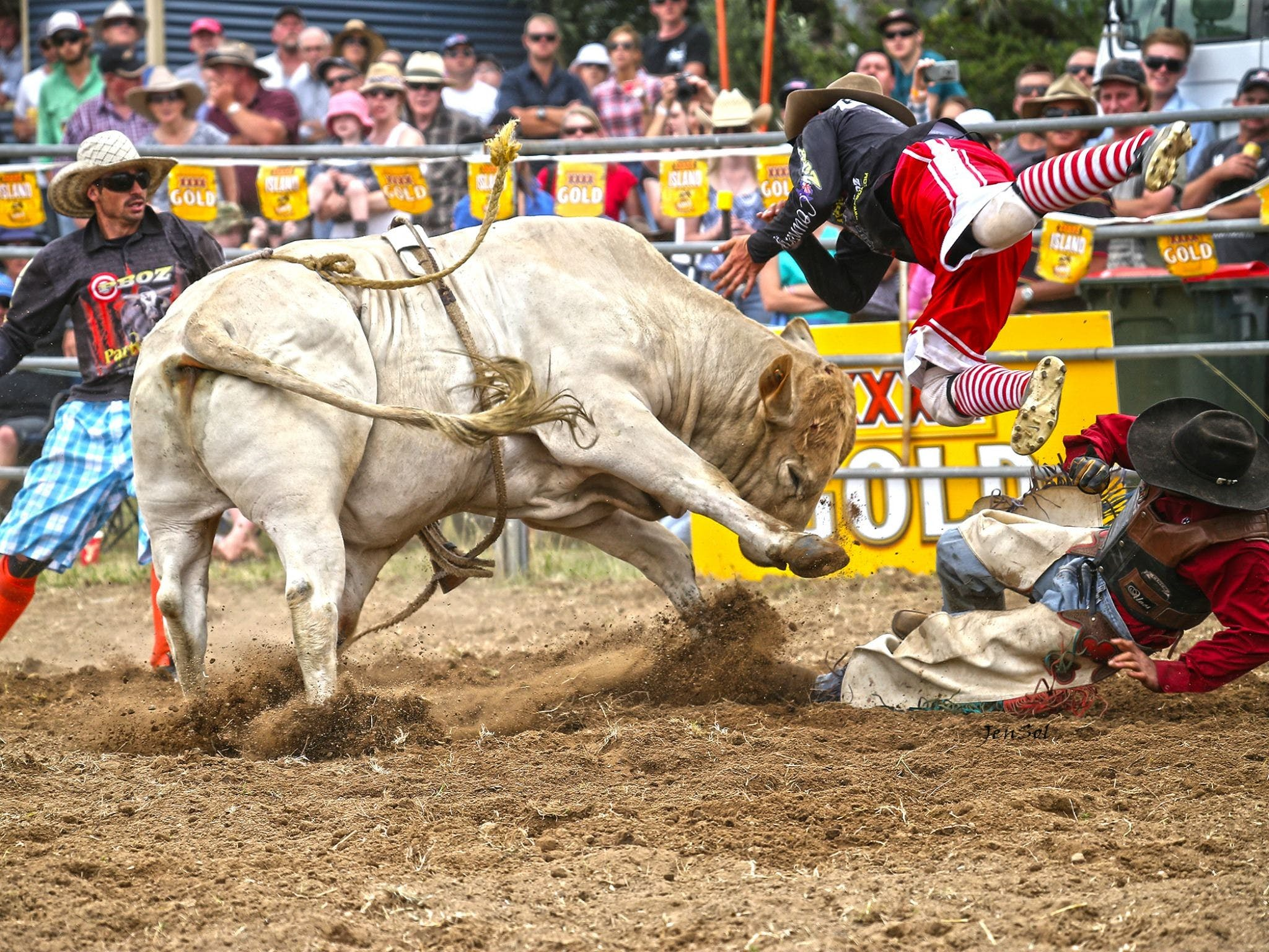 Jindabyne's Man From Snowy River Rodeo - Tourism Caloundra