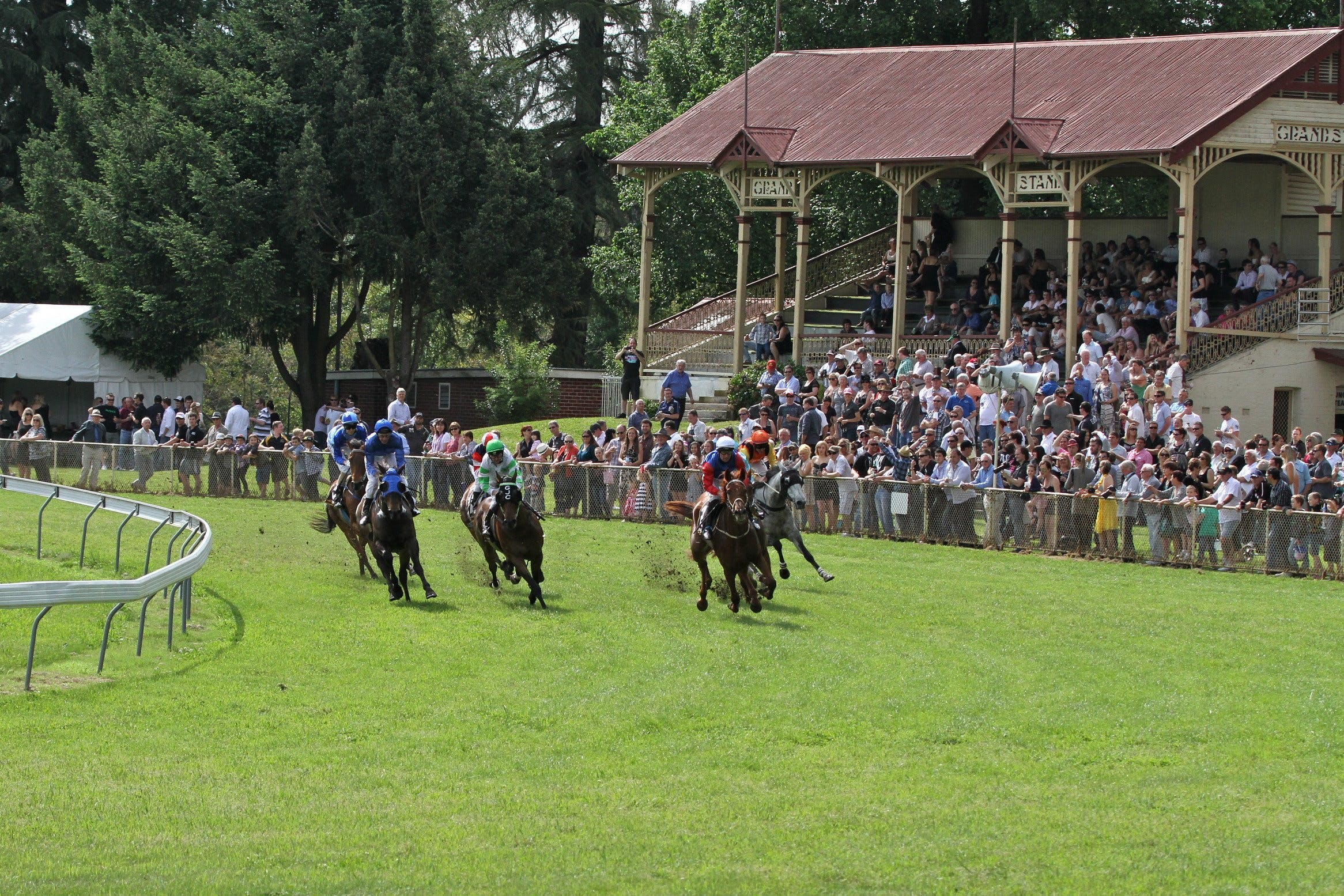 Tumut Derby Day - Tourism Caloundra