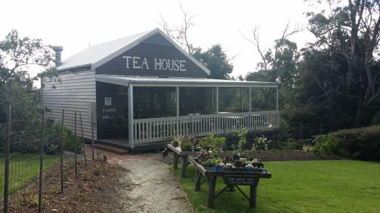 Stockyard Tea House - Tourism Caloundra