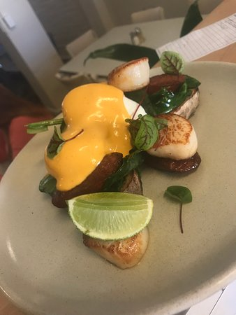 Hissy Fits Cafe - Tourism Caloundra