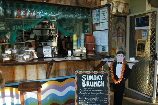 Sheoak Shack Gallery Cafe - Tourism Caloundra