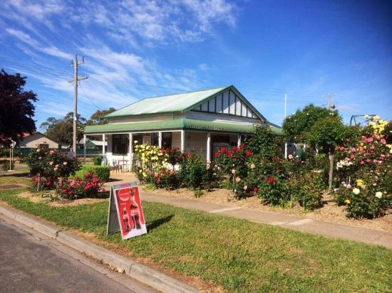 Rose Cafe - Tourism Caloundra