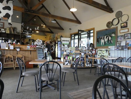 Holy Cow Cafe - Tourism Caloundra