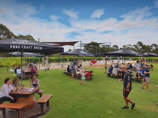 Boston Brewing Co.  Willoughby Park Winery - Tourism Caloundra
