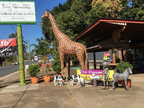 The Big Giraffe - Tourism Caloundra