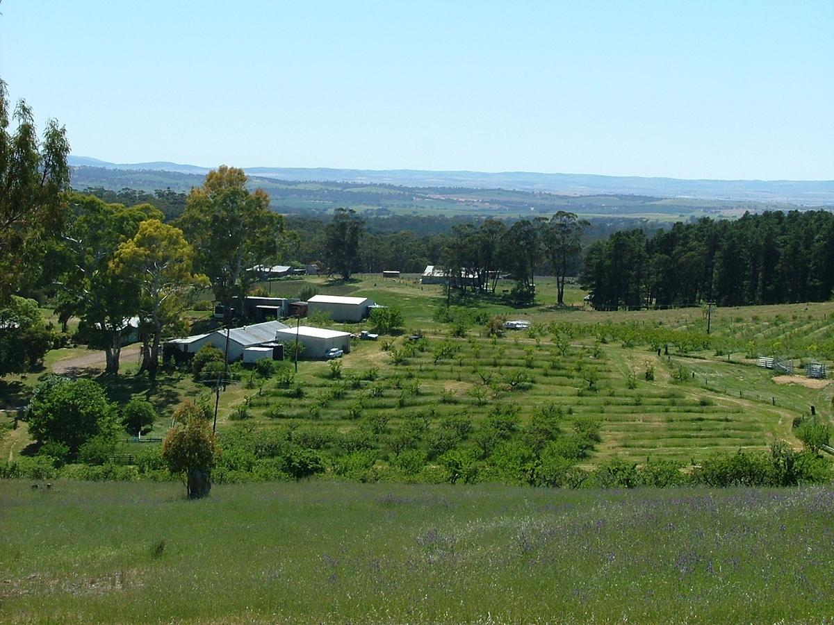 Taralee Orchards - Tourism Caloundra