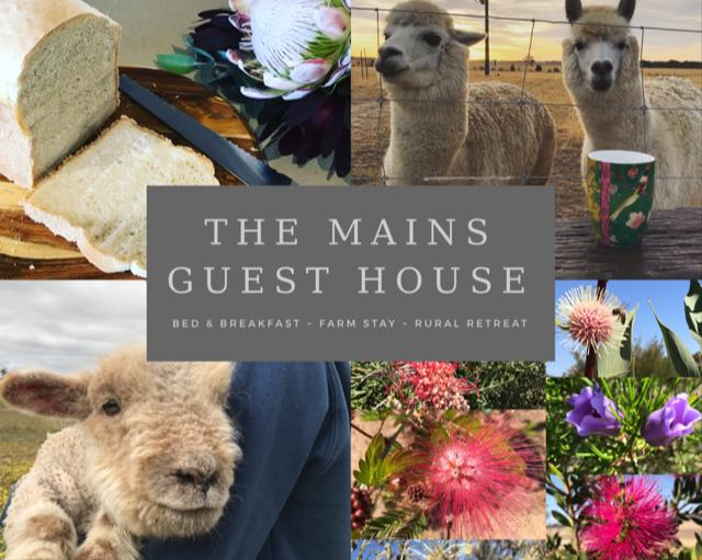 The Mains Guest House - Tourism Caloundra