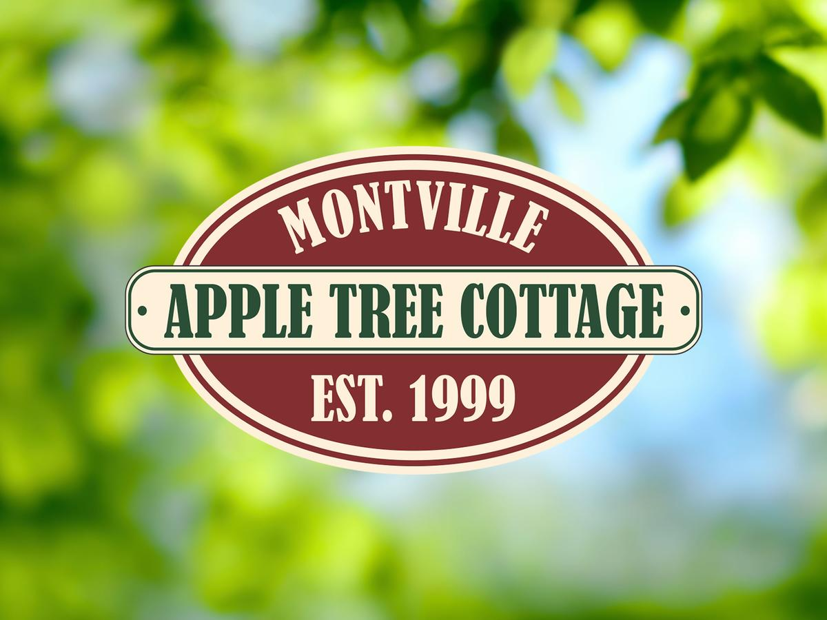 Apple Tree Cottage and Studio - Tourism Caloundra